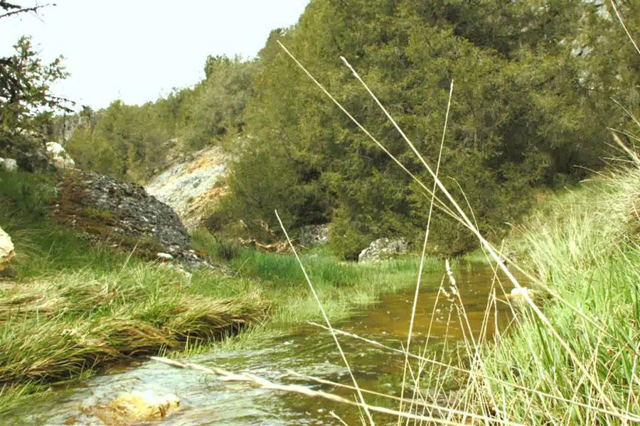 Rutas Cañón del Río Lobos (I)